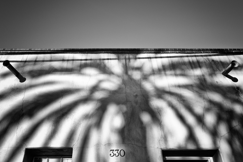 330 Palm. Tucson, Arizona, 2013