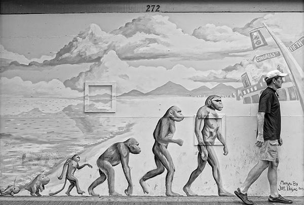 Evolution? Tucson, Arizona, 2013