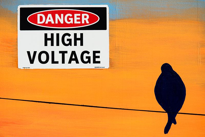 A High Voltage Mural. Longmont, Colorado, 2013