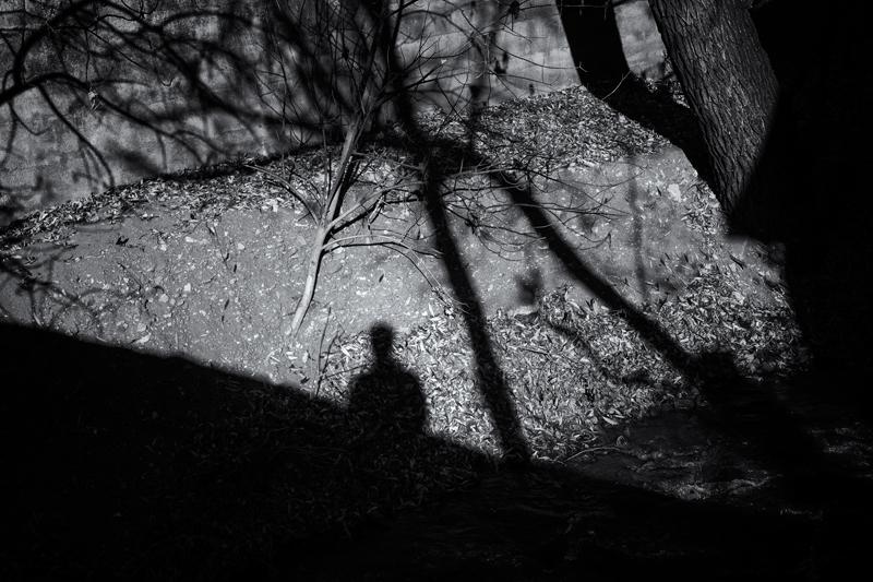 Lurking. Manitou Springs, Colorado, 2013