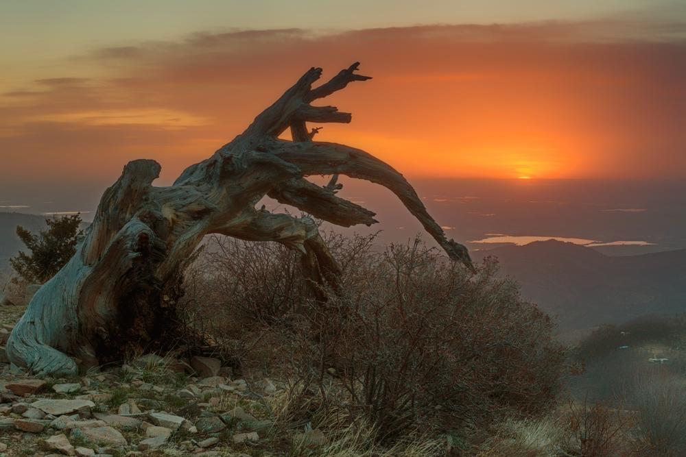 Sunrise. Sugarloaf Mountain, Colorado, 2014