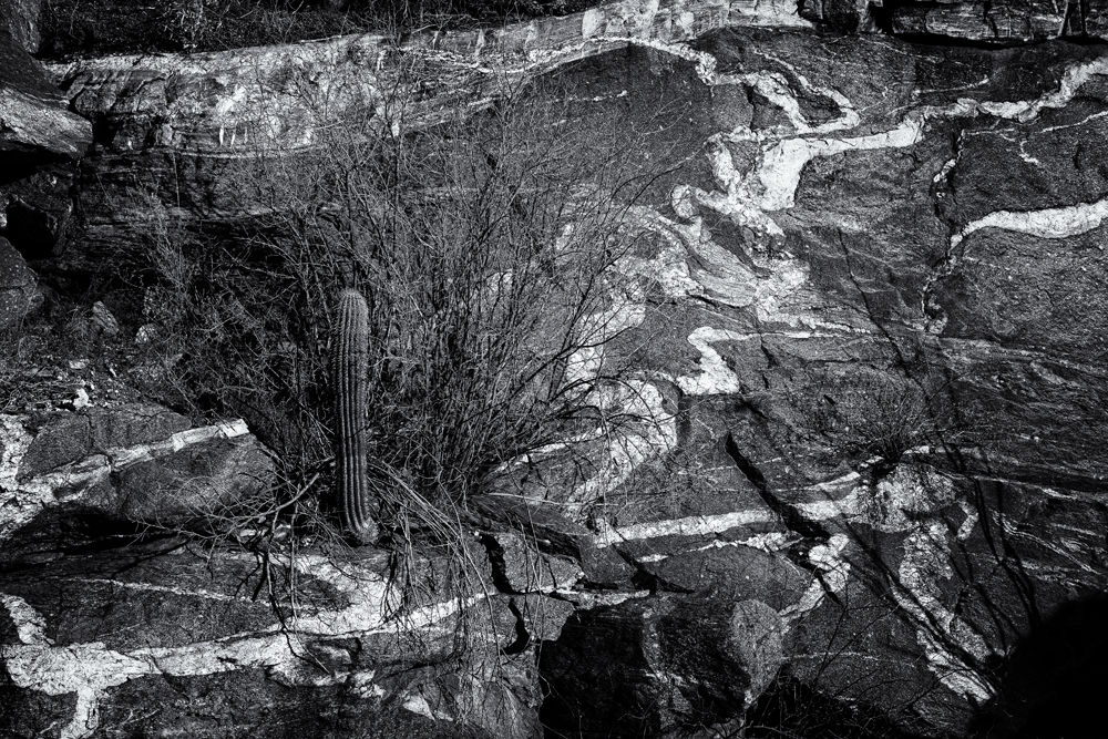 A Very Gneiss Landscape. Catalina Mountains, Arizona, 2014