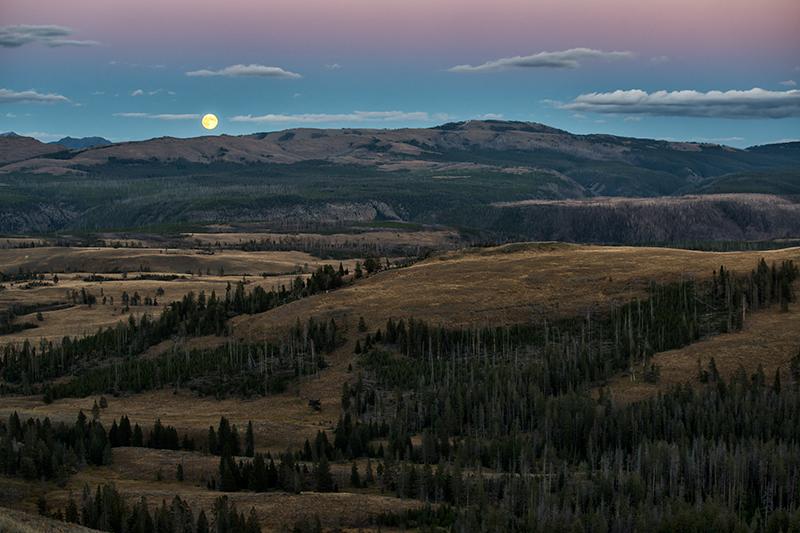 Yellowstone Moonrise. Yellowstone NP, Wyoming, 2013