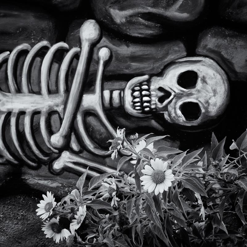 Día de los Muertos. Tucson, Arizona, 2014