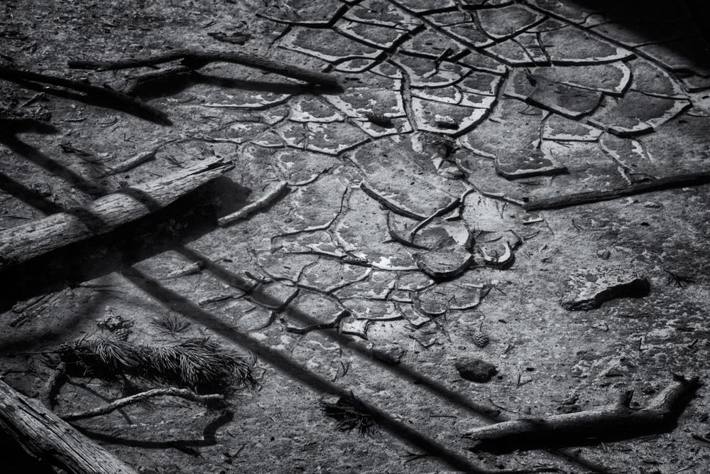 Underwater Debris. Yellowstone NP, Wyoming, 2014
