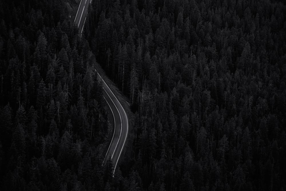Pathway. Yellowstone NP, Wyoming, 2014