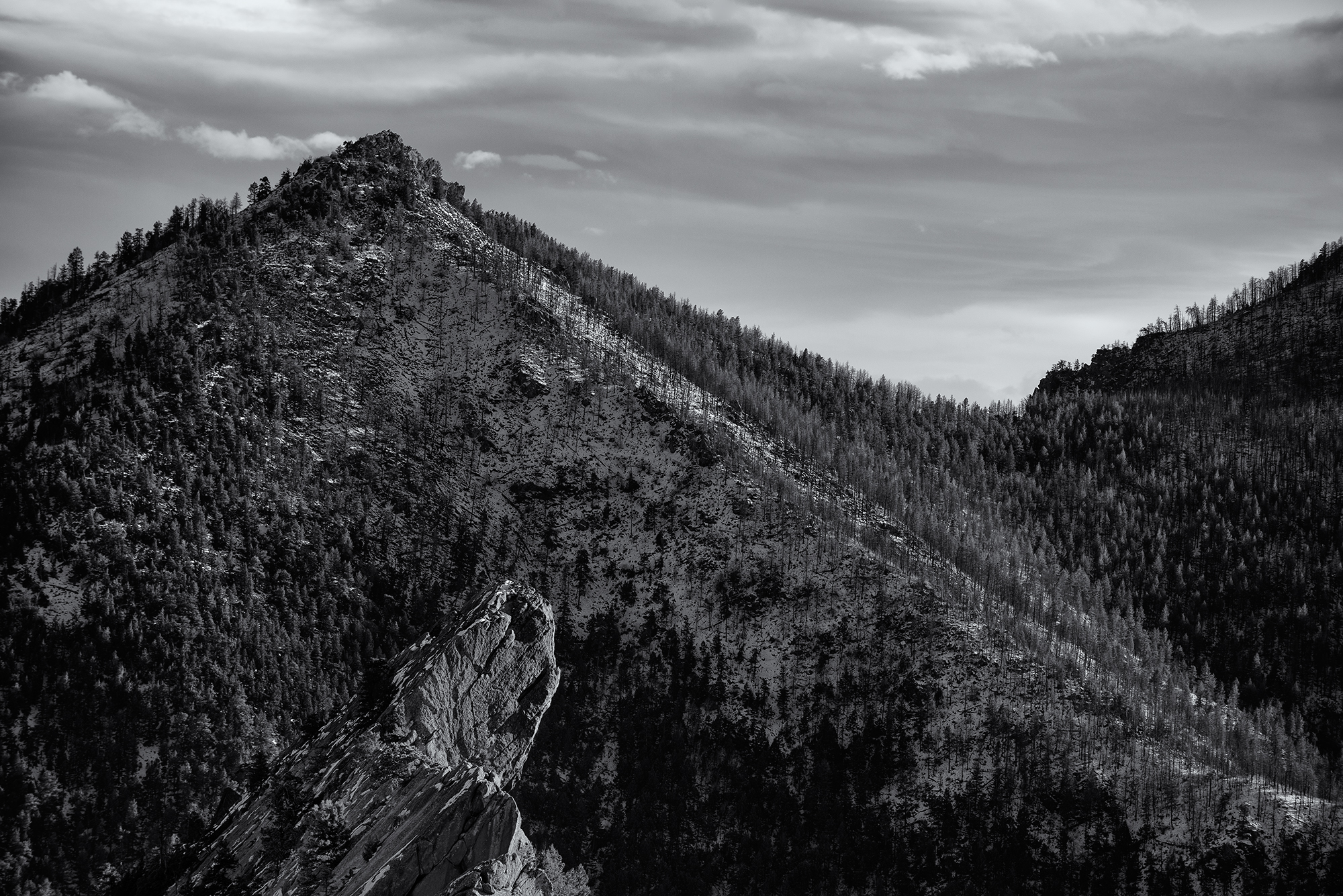 Bear Peak Profile. From Green Mountain, Boulder, Colorado, 2014. (Looking south. South Boulder Peak is up the right-hand ridge.)