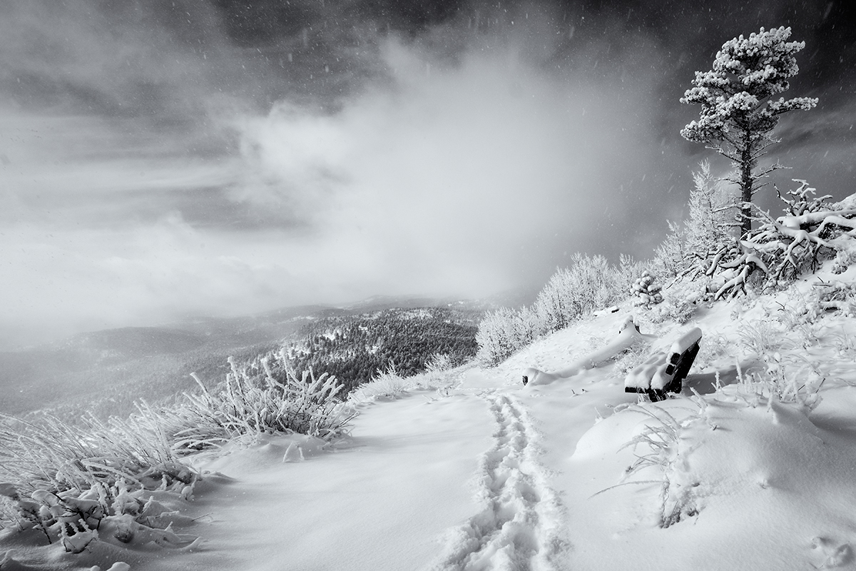 Sugarloaf Trail, First Tracks. Sugarloaf Mountain, Colorado, 2014