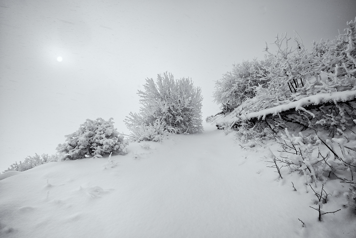 Thin Whiteout. Sugarloaf Mountain, Colorado, 2014