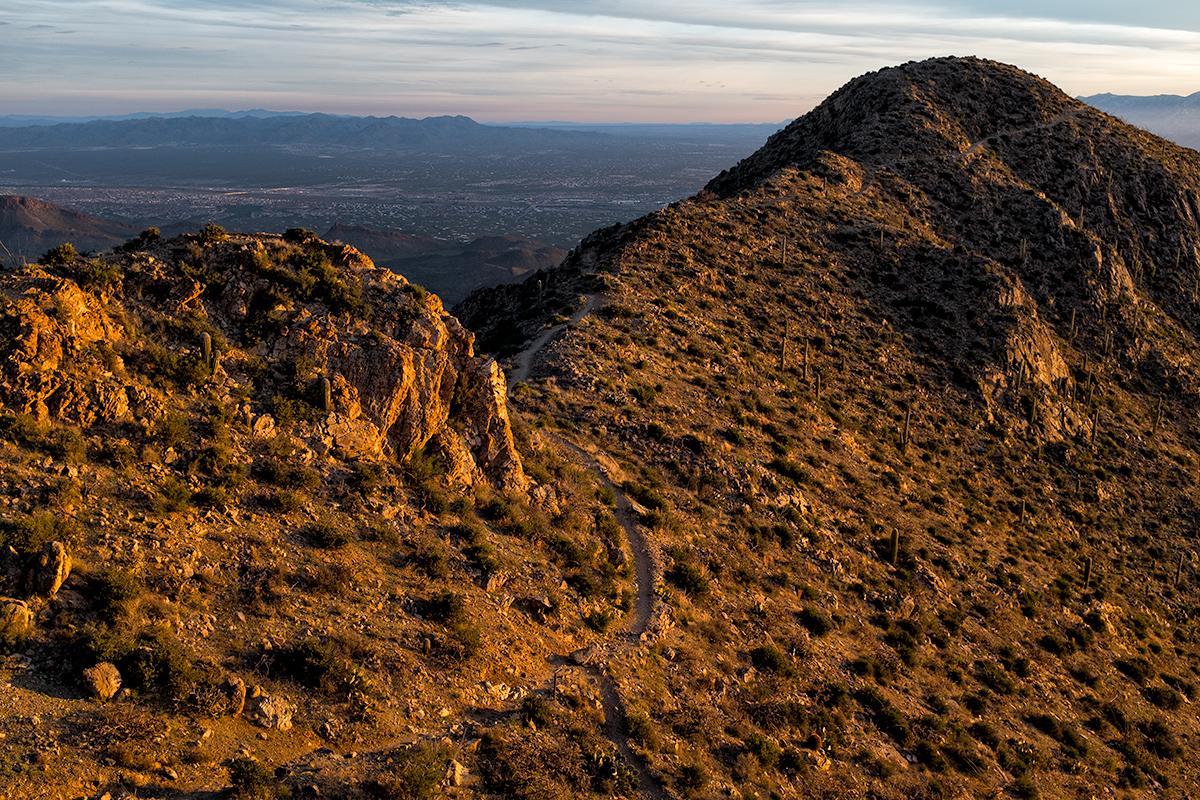 Wasson Peak in Morning Light. Tucson Mountains, Arizona, 2015