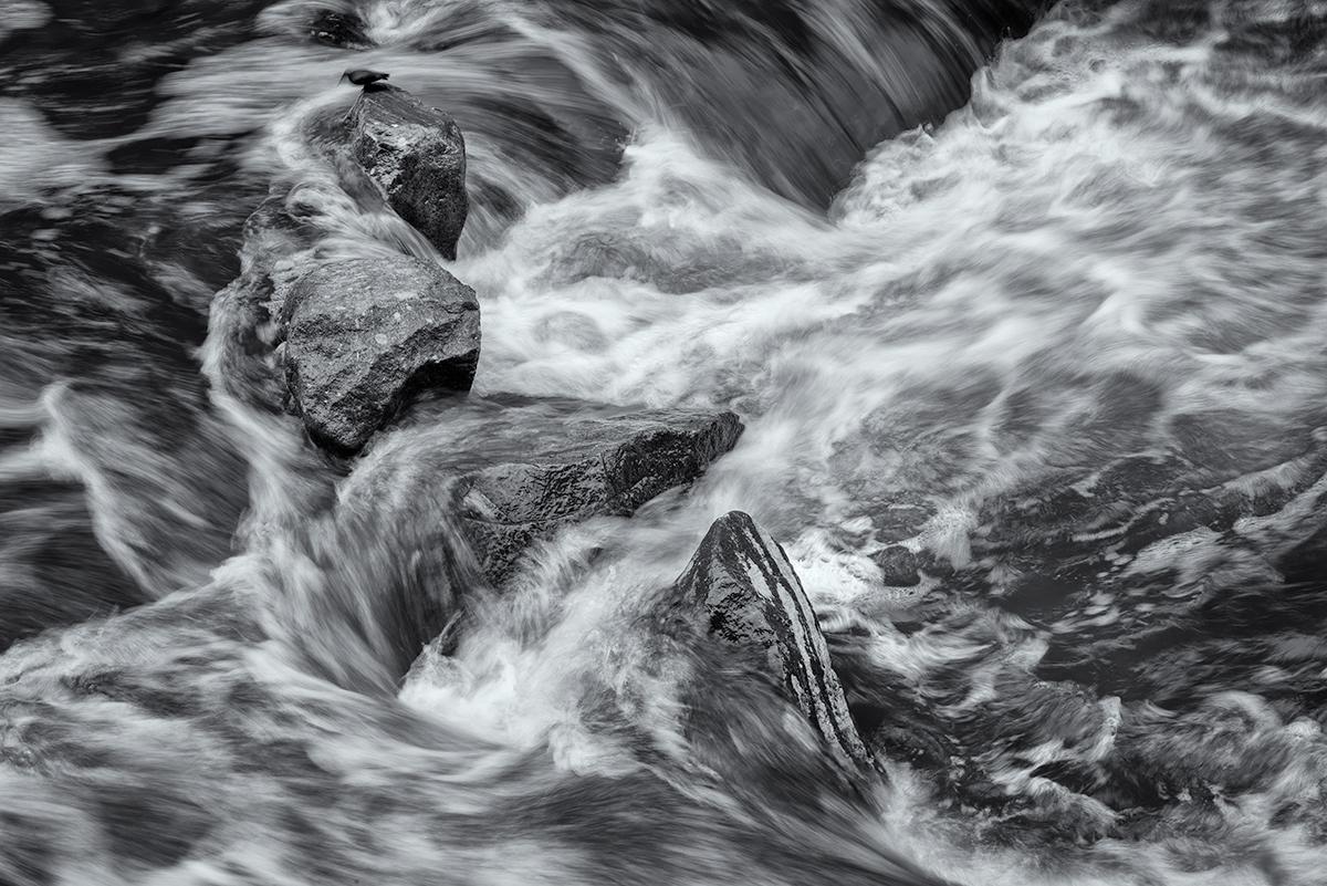 Perch Among Chaos. Eldorado Springs Canyon, Colorado, 2015