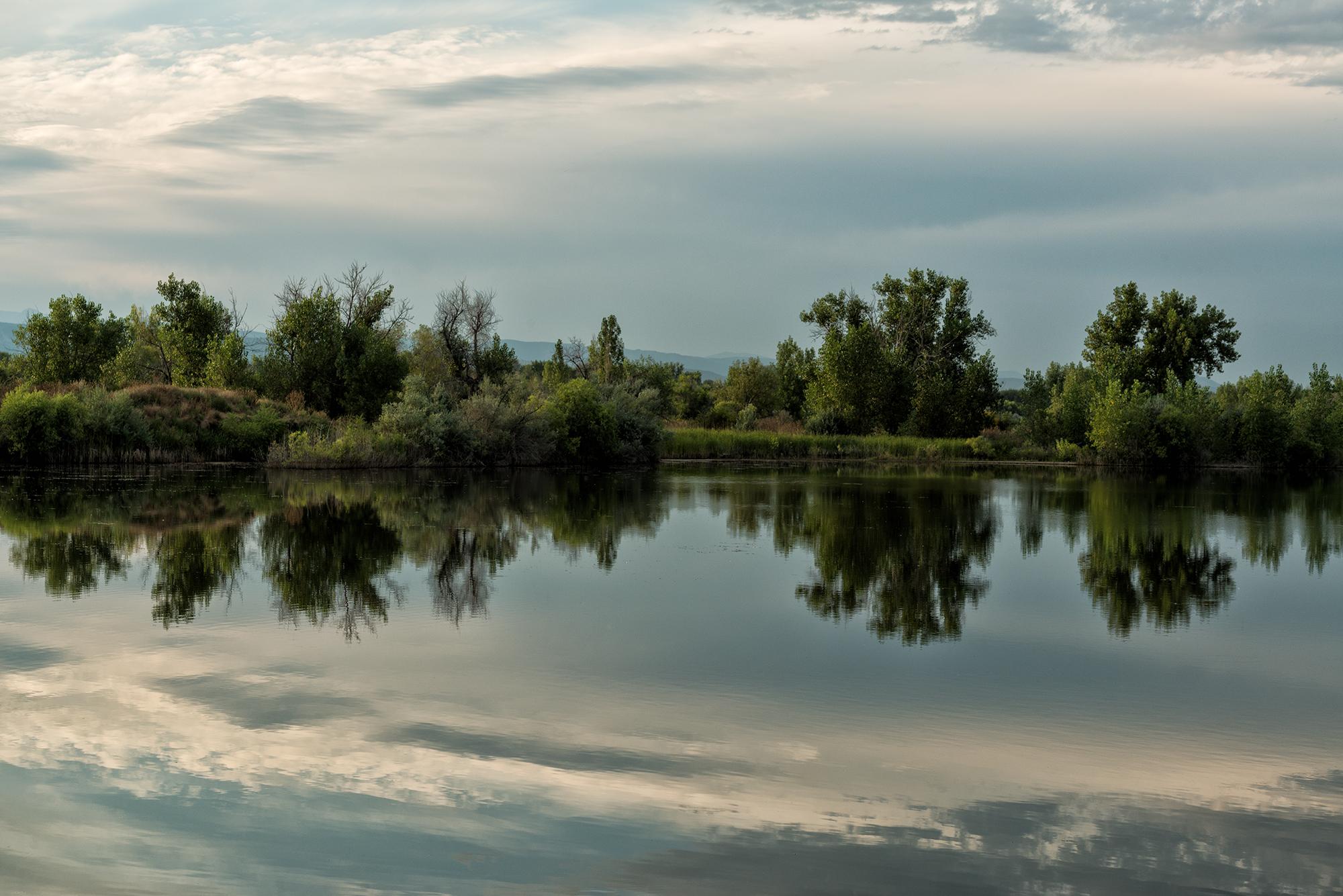 Sawhill Reflection, #33. Sawhill Ponds, Boulder, Colorado, 2015
