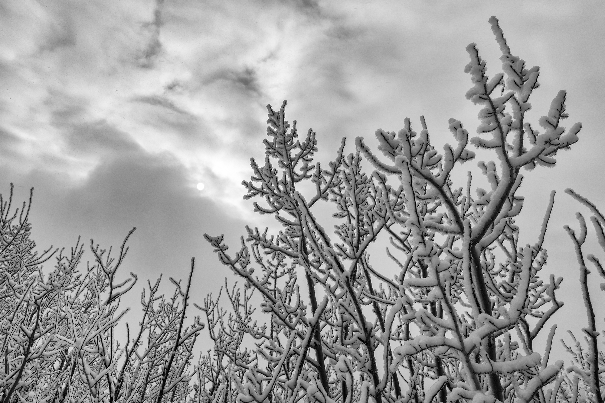 Breaking Storm. Sugarloaf Mountain, Colorado, 2015