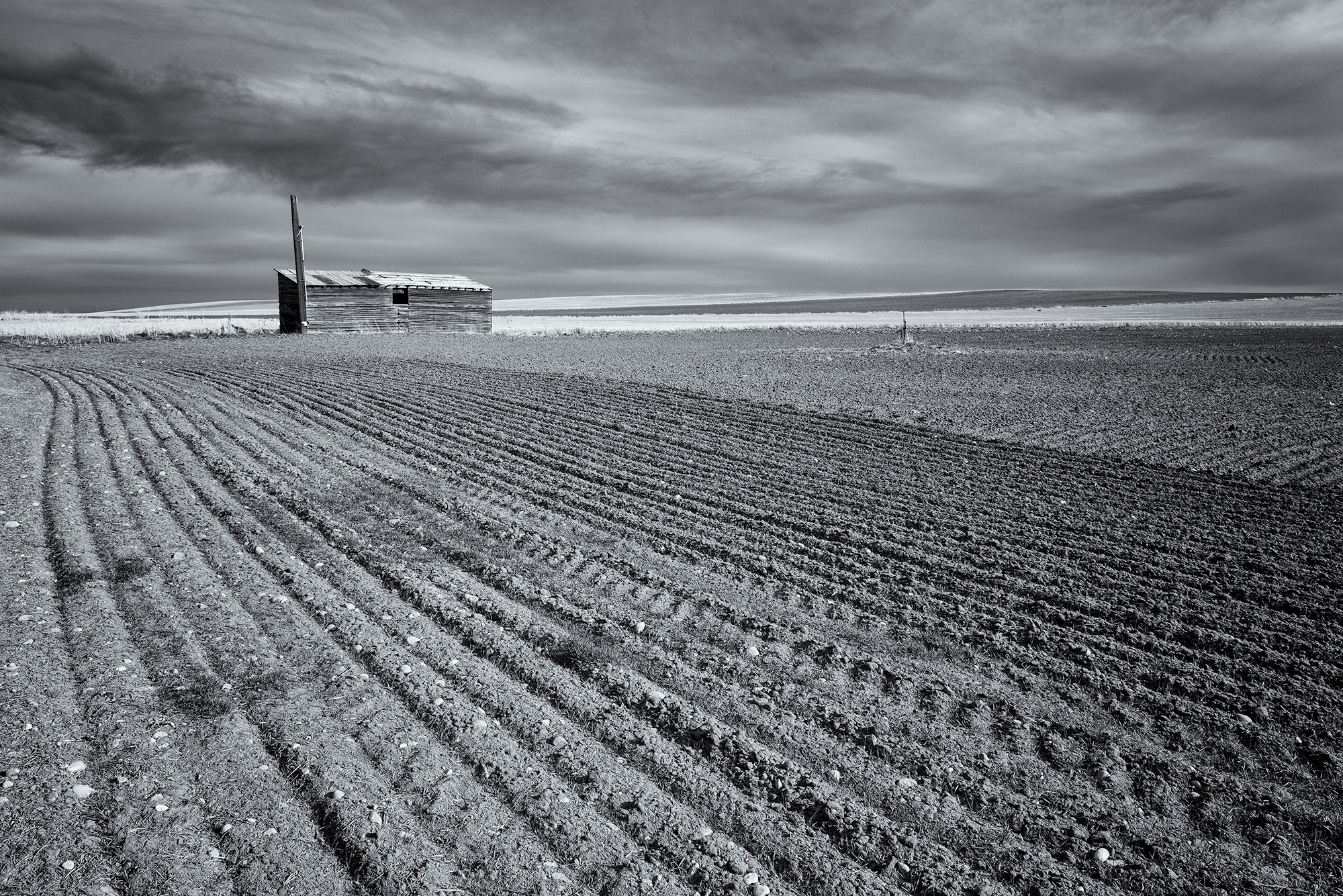 Disappearing Ag. Weld County, Colorado, 2016