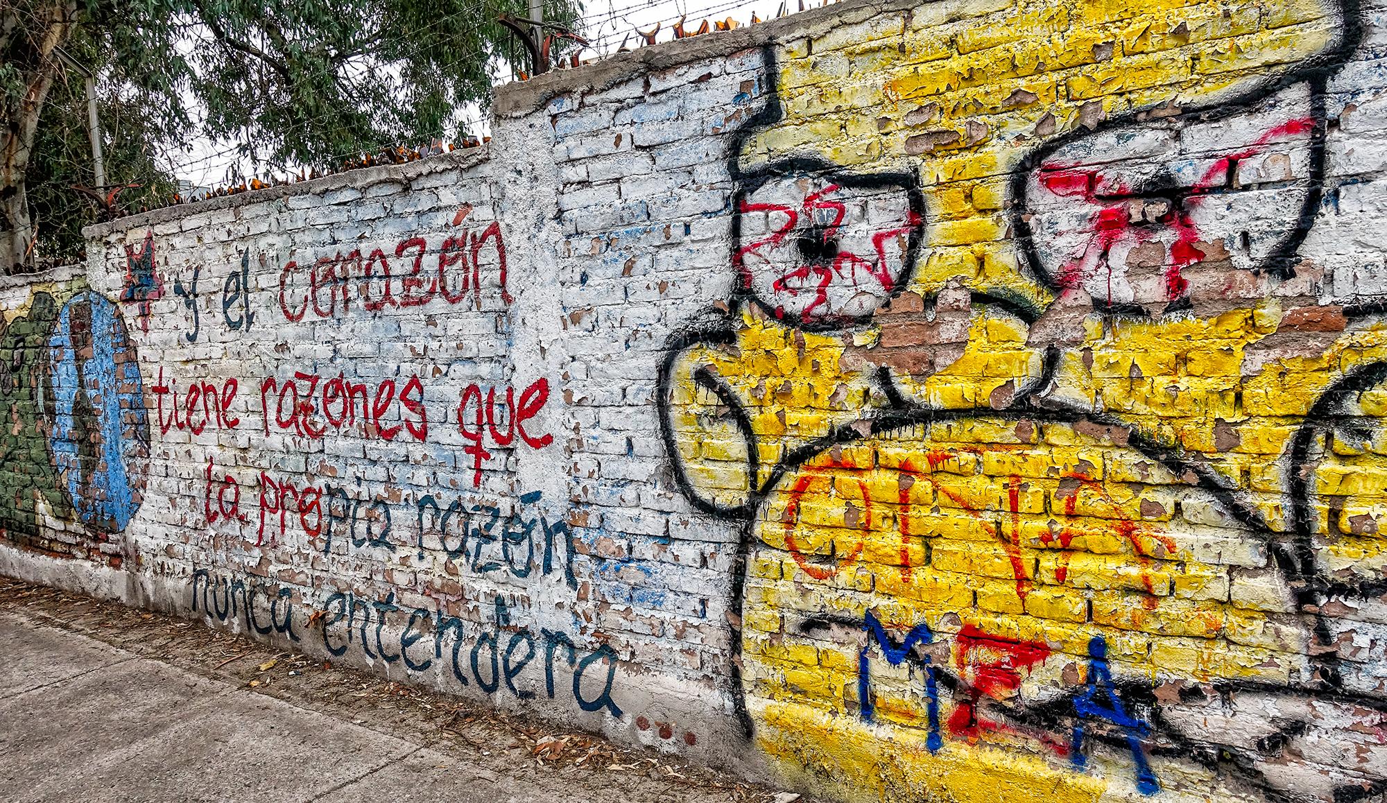 The Heart Has Reasons. Mendoza, Argentina, 2016