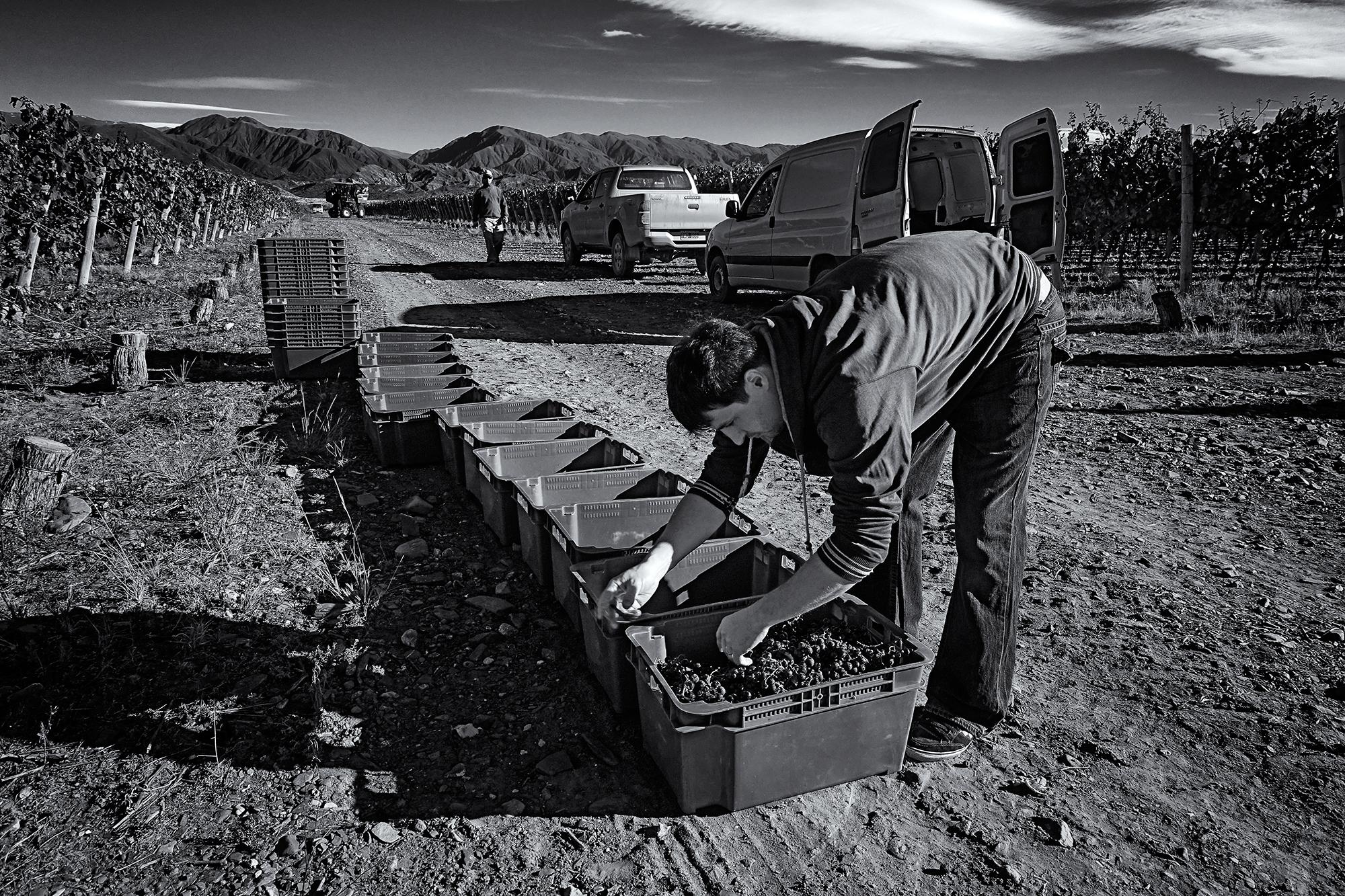 A Cursory Cleaning. El Valle del Pedernal, San Juan, Argentina, 2016