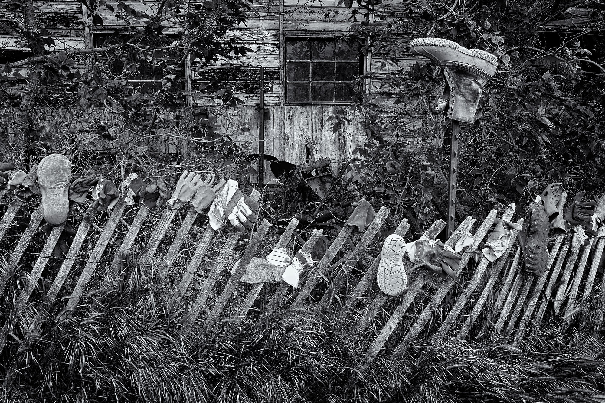 Gardener's Fence. Long's Gardens, Boulder, Colorado, 2016