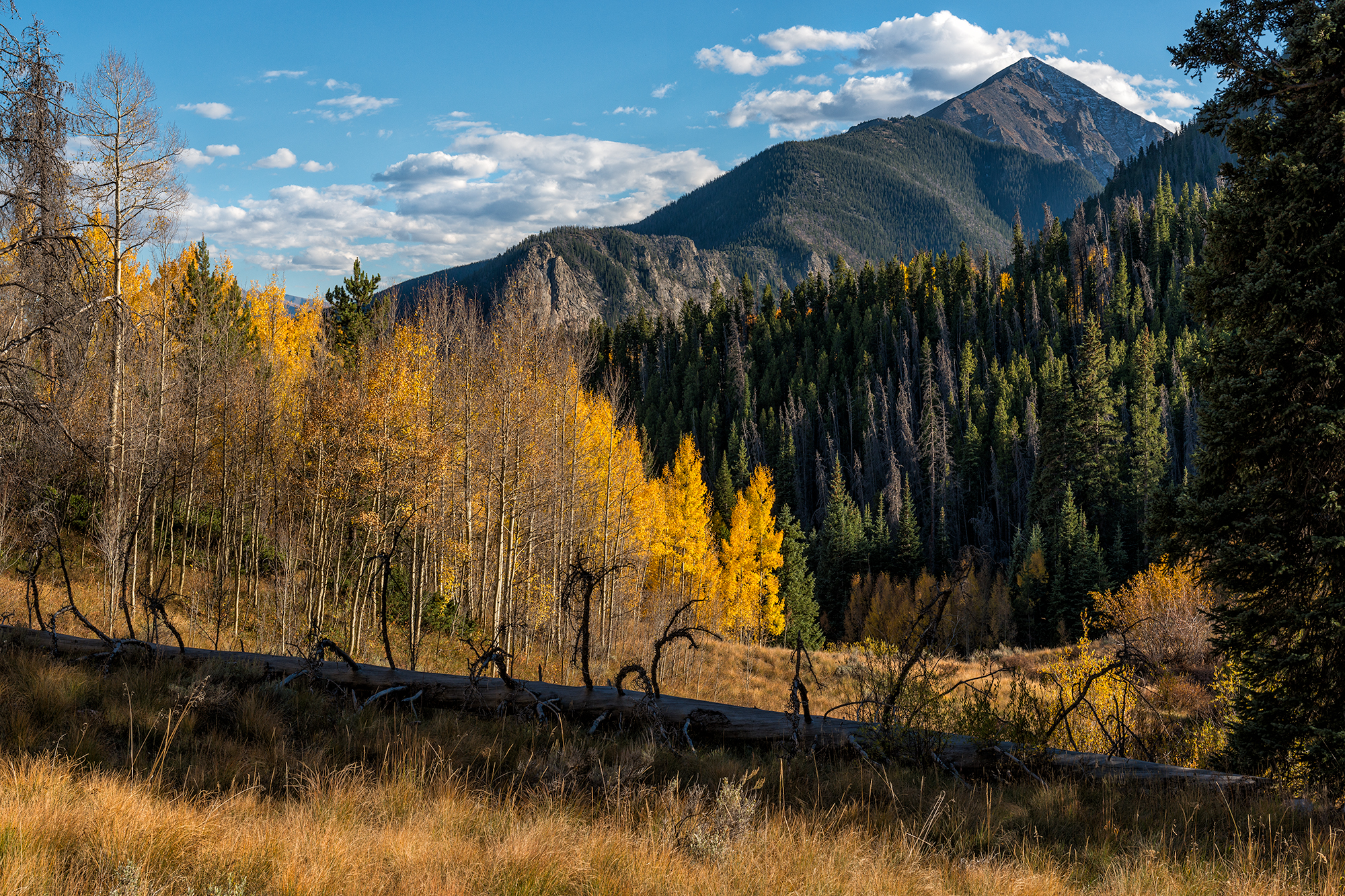 Tenmile Peak, Autumn. Meadow Creek Trail, Frisco, Colorado, 2016