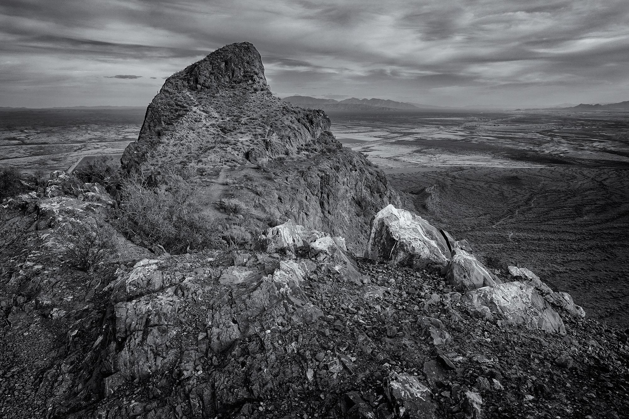 Picacho Portrait. Picacho Peak State Park, Arizona, 2016