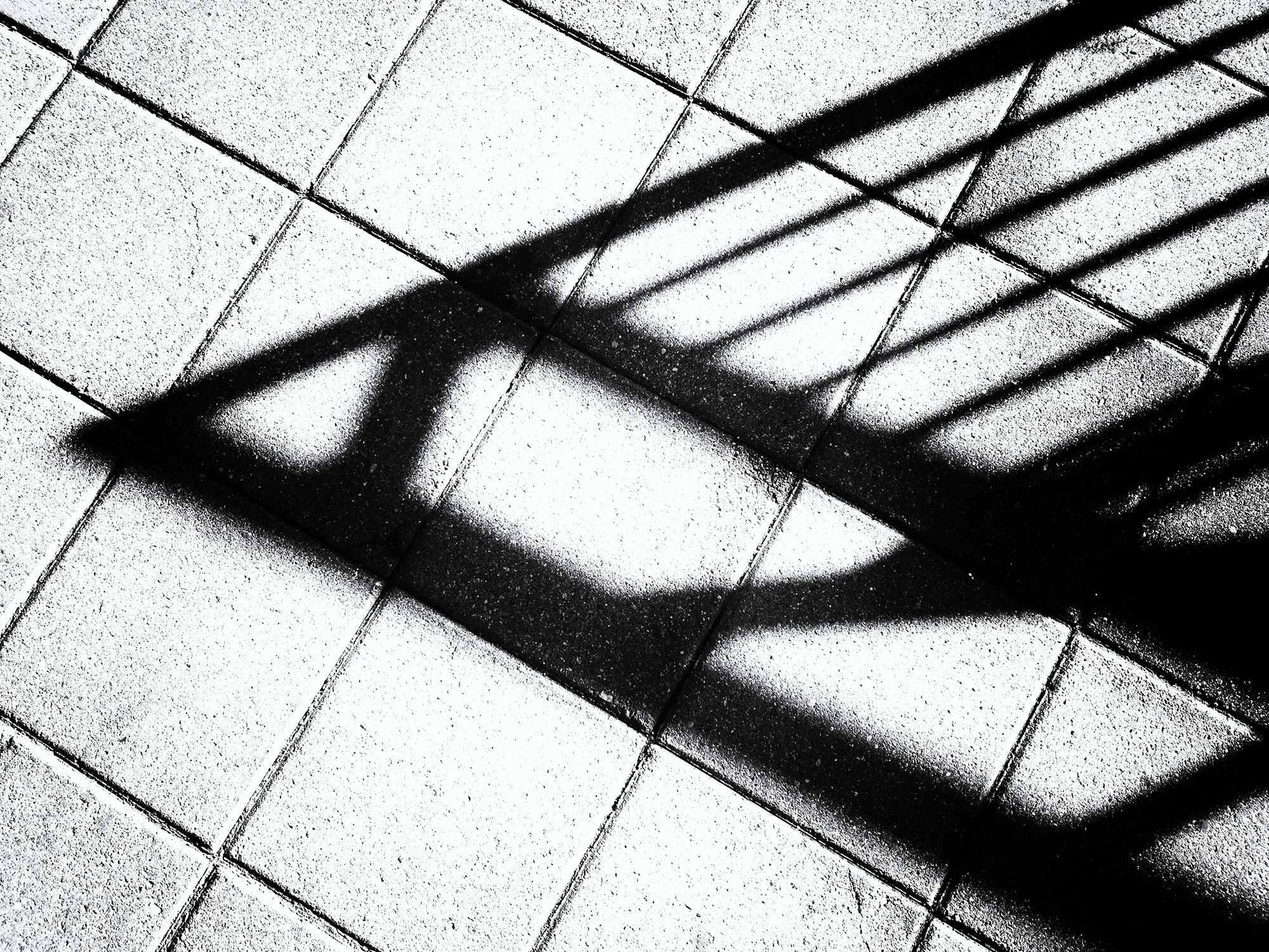 Mall Shadows, #1. Boulder, Colorado, 2016