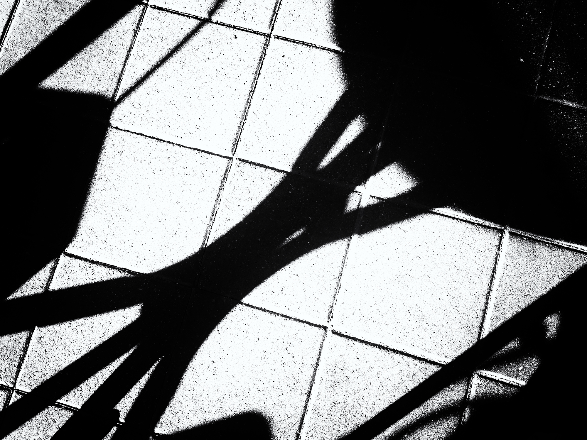 Mall Shadows, #5. Boulder, Colorado, 2016