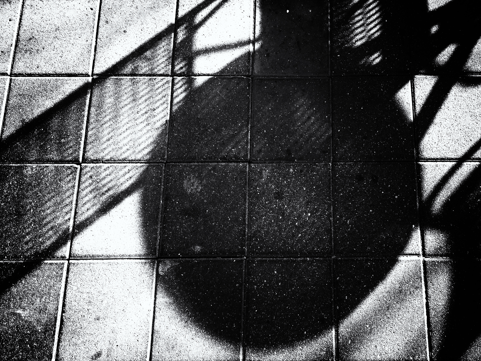 Mall Shadows, #6. Boulder, Colorado, 2016