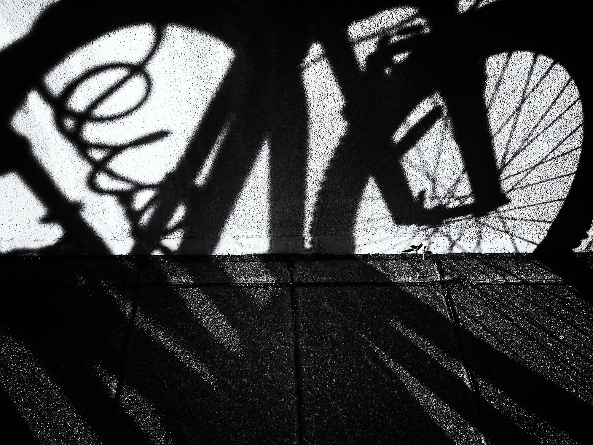 Mall Shadows, #8. Boulder, Colorado, 2016