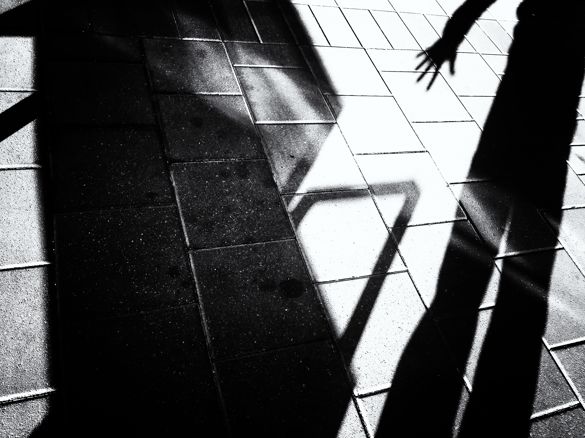 Mall Shadows, #9. Boulder, Colorado, 2016