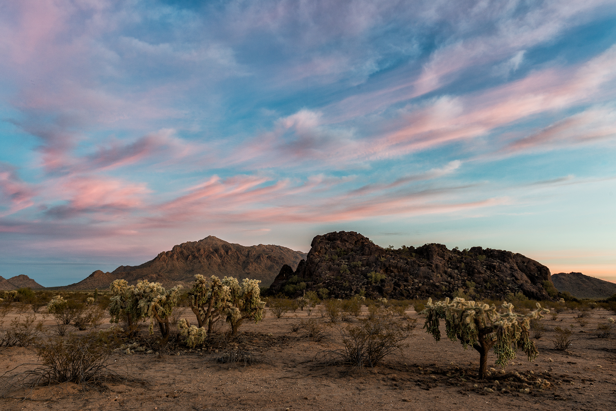 Pink Desert Sunrise. Near Picacho Peak, Arizona, 2016