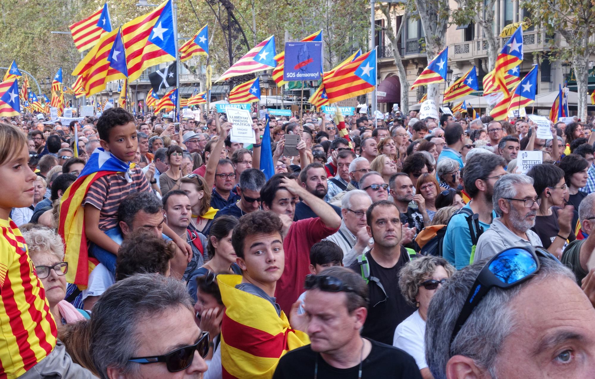 Manifestació, #7. Barcelona, Catalunya, Espanya